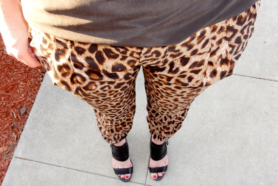Leopard Print Pants