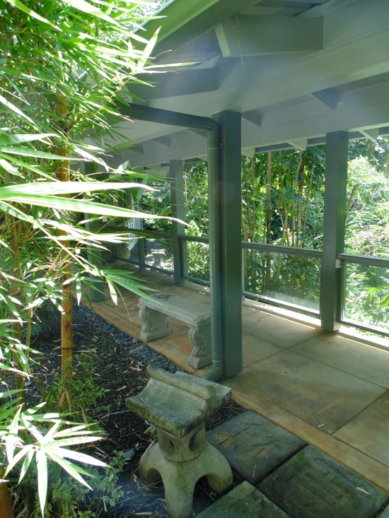 A cute sitting area overlooking the rainforest