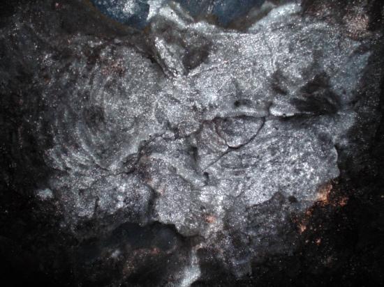 volcanic bacteria