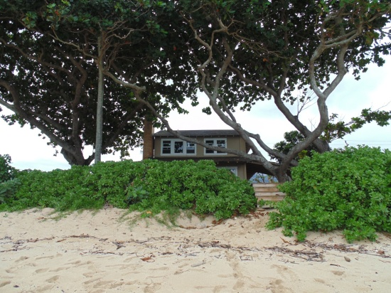 Hawaiian Rental House